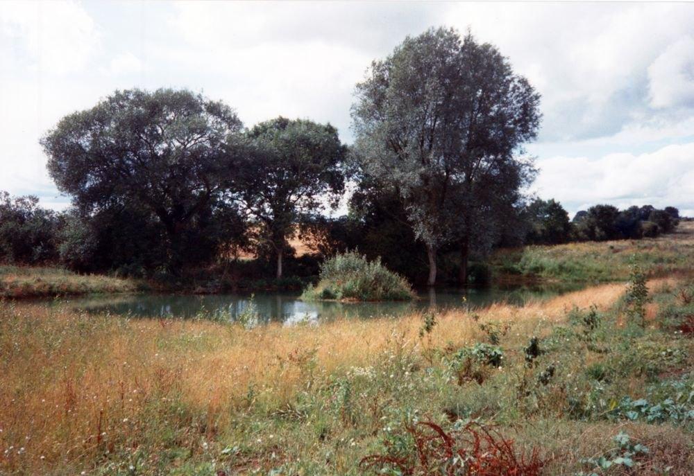Summer 1992 Pond near Hollier's Barn.