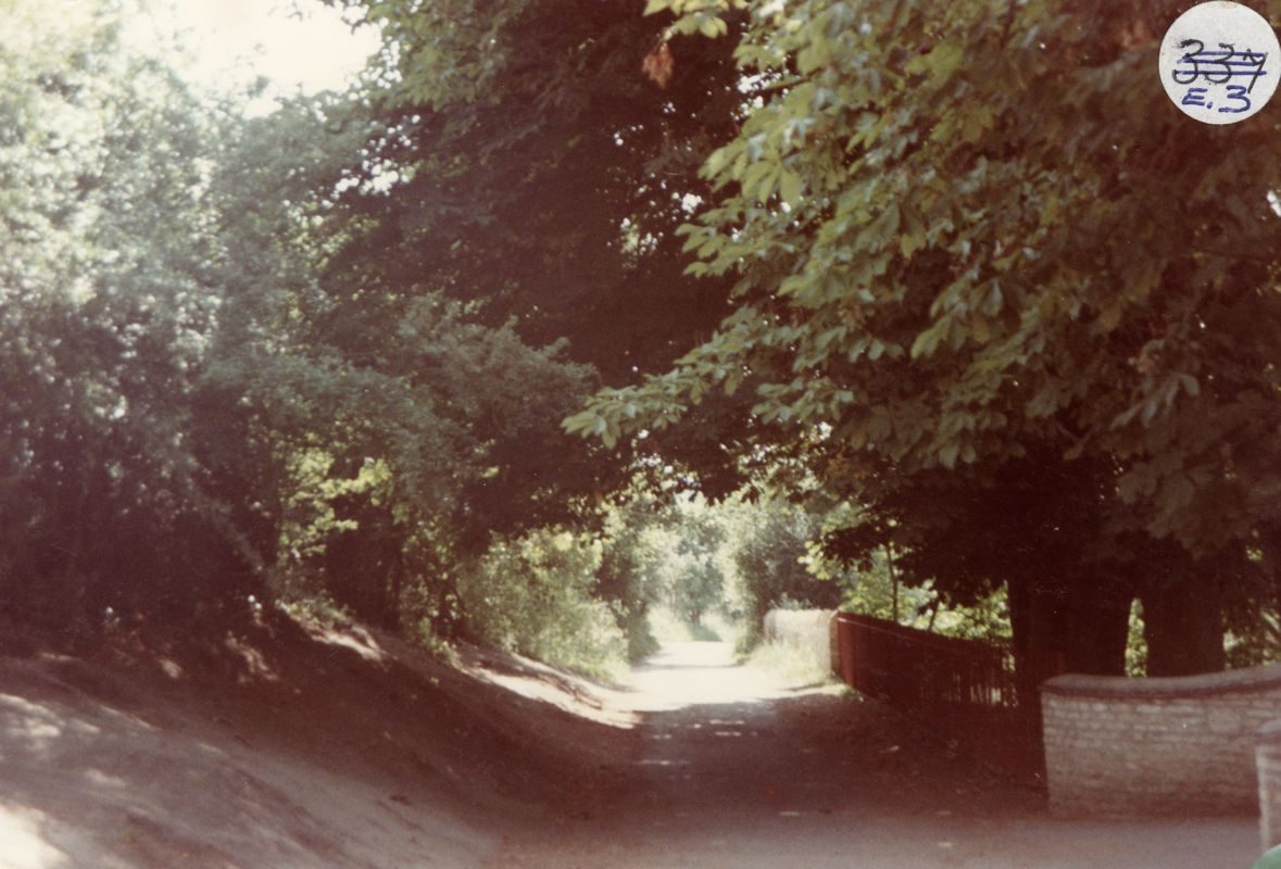 1984 Fox Lane looking west. The bank on the south (left) side of the junction of Fox Lane and Kiddington Road is the site of cottages which have now gone.