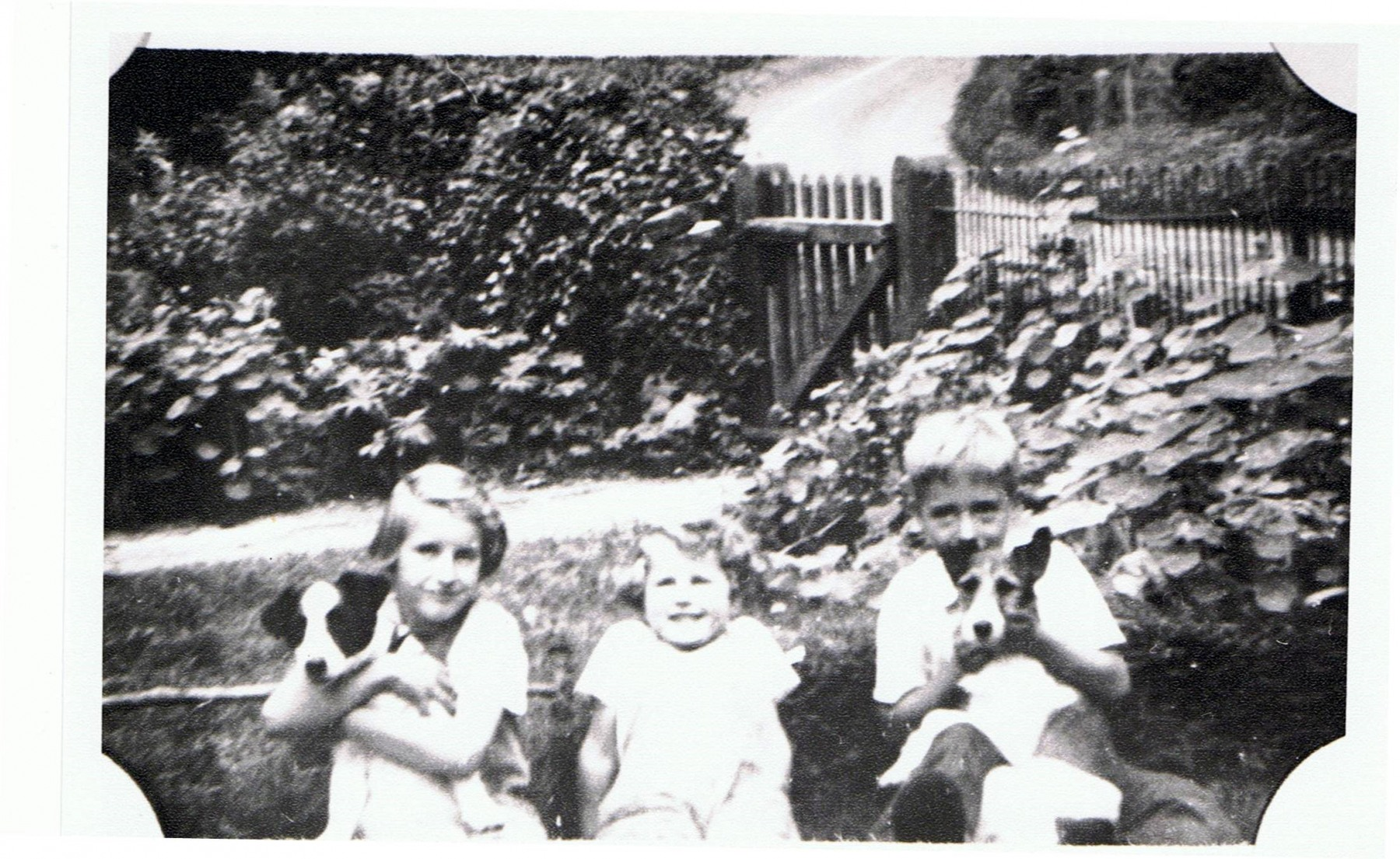 Whistlow. From left: Helen Wood (now Mrs. Smith) (holding Sooty the dog), Muriel Wood) (now Mrs. Standen) and David Eaglestone (holding Betsy the dog), at home.
